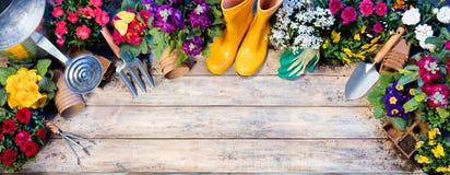 Composition de jardinage en vue supérieure - outils et pots de fleurs photographie stock