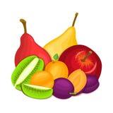 Composition de kiwi juteux de prune d'abricot de poire de pomme Le vecteur mûr porte des fruits regard appétissant entier et de t illustration libre de droits