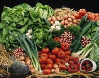 Composition de légume et de fruit sur la paille images libres de droits