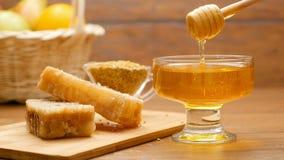 Composition de pain de miel, de nid d'abeilles et d'abeille Honeyspoon a plongé en miel (le NO3) clips vidéos