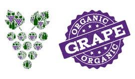 Composition de raisin des bouteilles de vin et du raisin et du timbre de grunge illustration de vecteur