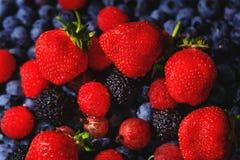 Composition de stupéfaction des fraises, des framboises et des groseilles à maquereau rouges sur le fond des myrtilles bleues Fra images stock