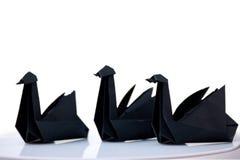Composition de trois cygnes noirs Images stock