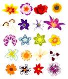 Composition de vecteur de fleur illustration stock