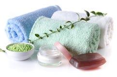 Composition des accessoires d'hygiène et de bien-être Images libres de droits
