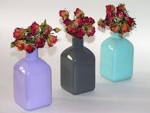 Composition des fleurs sèches Photo stock