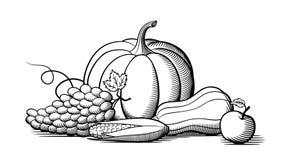 Composition des fruits et légumes mûrs frais Rebecca 36 Images stock