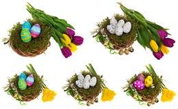 Composition des oeufs de pâques, fleurs, tulipes Oeufs de pâques dans le mult Images libres de droits