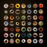 Composition des yeux animaux dans le cercle Photographie stock