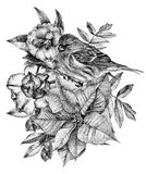 Composition of different flowers, birds and plants drawn by hand Royalty Free Stock Image