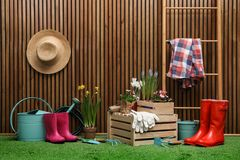 Composition with different gardening tools on grass at wooden wall. Space for text. Composition with different gardening tools on artificial grass at wooden wall royalty free stock photo