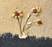 Composition from different nuts Royalty Free Stock Photos