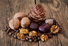 Composition with different nuts. Cedar cone with different nuts on rural old table Royalty Free Stock Image