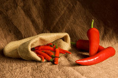 Composition with different pepper Royalty Free Stock Photography