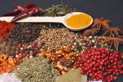 The Composition with different spices and herbs. Composition with different spices and herbs Royalty Free Stock Photo