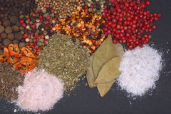 Composition with different spices and herbs. Composition with different spices on black Royalty Free Stock Photos