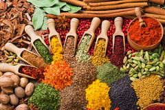 Composition with different spices and herbs Royalty Free Stock Photos
