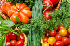 Composition of different varieties of tomatoes with herbs Royalty Free Stock Photo
