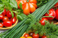 Composition of different varieties of tomatoes with herbs Stock Photo