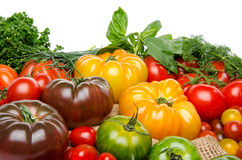 Composition of different varieties of tomatoes and herbs on a bu Stock Image