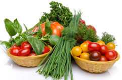 Composition of different varieties of tomatoes with herbs Royalty Free Stock Images