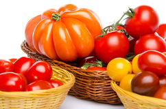 Composition of different varieties of tomatoes Stock Photos