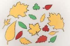 Composition of drawn autumnal leaves. Isolated on white Stock Image