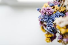 Composition dried colored flowers standing on a white background of the table. copy space. Romantic flowers. Place for text. Composition dried colored flowers Royalty Free Stock Image