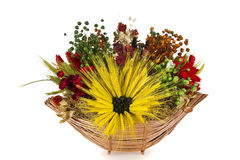 Composition of dried flowers and wheat Royalty Free Stock Photo