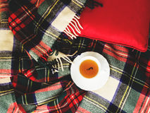 Composition with drink cup of tea on the sofa with plaid. Toned Stock Photos