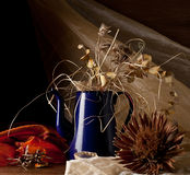 Composition of dry flowers Stock Image
