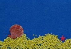 Composition en été avec des coquilles sur le fond bleu de scintillement image stock
