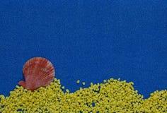 Composition en été avec des coquilles sur le fond bleu de scintillement photographie stock