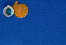 Composition en été avec des coquilles sur le fond bleu de scintillement photo libre de droits