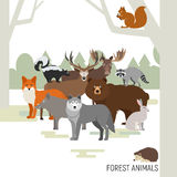 Composition en animaux de forêt Images stock