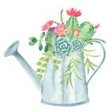 Composition en aquarelle avec des succulents, des cactus et la boîte d'arrosage illustration de vecteur