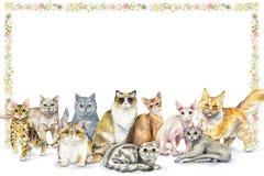 Composition en aquarelle avec dix races différentes de chats et de flo illustration de vecteur