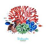 Composition en aquarelle avec les coraux multicolores, les coquillages, les algues et les poissons tropicaux illustration stock
