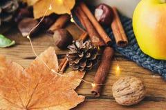 Composition en automne avec de la cannelle et des feuilles photo libre de droits