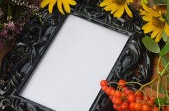 Composition en automne avec des fleurs et des baies de sorbe Photo libre de droits