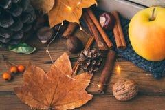 Composition en automne avec des pommes, feuilles image stock