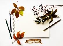Composition en automne avec le carnet à dessins, les crayons et les verres, décorés des feuilles et des baies rouges Configuratio Image libre de droits