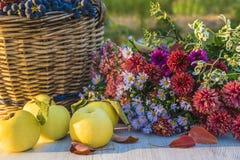 Composition en automne avec les pommes mûres, panier en osier avec des raisins r photo libre de droits