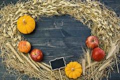 Composition en automne, cadre fait en transitoire sèche d'herbe de foin images libres de droits