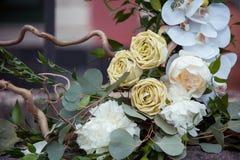 Composition en décor avec des orchidées Pivoines et roses image libre de droits