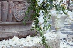 Composition en décor avec des pétales et des orchidées images libres de droits