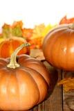 Composition en décoration de thanksgiving sur le conseil en bois Image stock