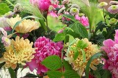 Composition en fleur avec des pivoines et des chrysanthèmes Photo libre de droits