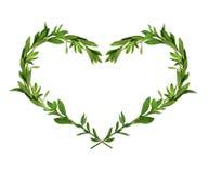 Composition en forme de coeur d'herbe verte Photos stock