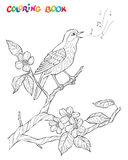 Composition en jardin de ressort Un oiseau chante sur une branche de fleur Illustration noire et blanche décorative fleurie Photographie stock
